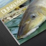 Dunai márnák nyomában
