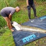 Mázsa feletti fogással nyert versenyt a Koós Catfish Team