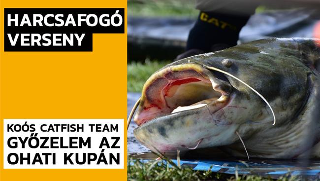 Két hatalmas harcsával nyert versenyt a Koós Catfish Team
